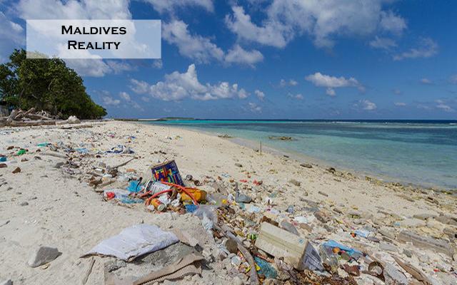 Maldives Reality